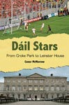 Dail Stars - From Croke Park to Leinster House